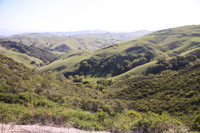 Images of the green hills of Paso Robles California taken by Jim Boulden