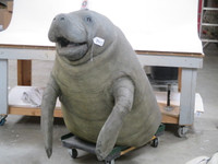 Realistic Manatee Upper Chest and Head Puppet