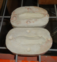 Peccary Pig Tongue Mold