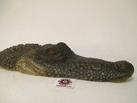 Alligator Head Mold Pattern