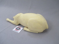 cat lying down body position haunches view