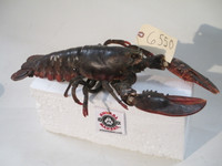 Realistic, Life-sized, Animated Lobster Replica For Film Makers