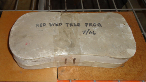 Red Eyed Tree Frog Body Mold 1