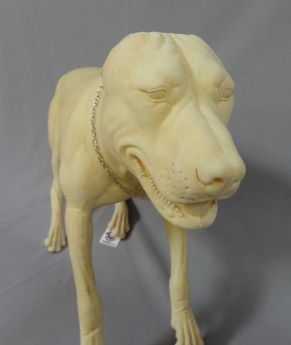Pitbull Replica Form
