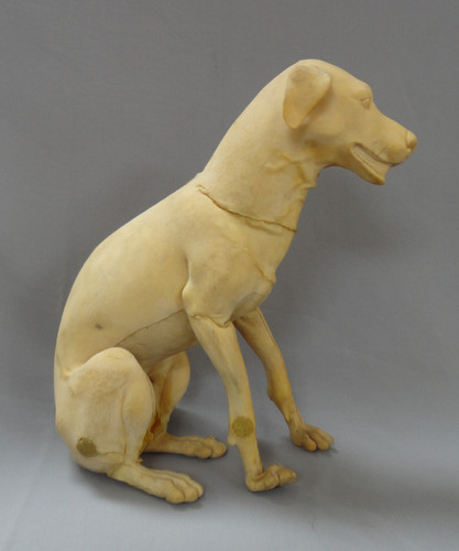 Sitting Small Terrier Form Blank