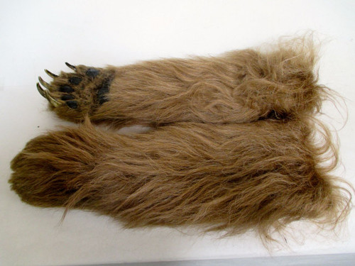 Realistic Brown Bear Claw Left and Right.
