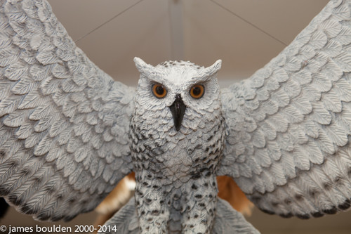 "This realistic owl sculpture has an amazing wingspan of almost 48"" (1.22m). This owl model is cast in urethane, and painted with great detail. Each feather is lovingly sculpted into its finish. Mounts through back. Originally created for the Ft. Worth Zoo and their ""weather exhibit"". Built to last, and is very realistic."