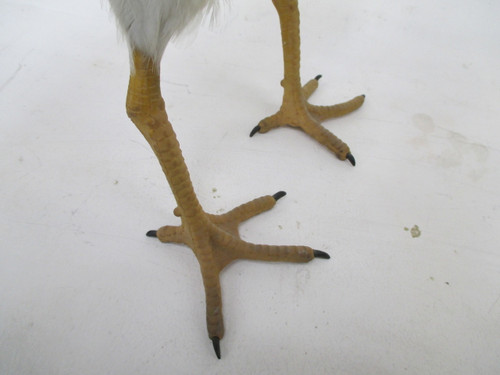 Chicken Legs, Feet and Claws Movie Prop