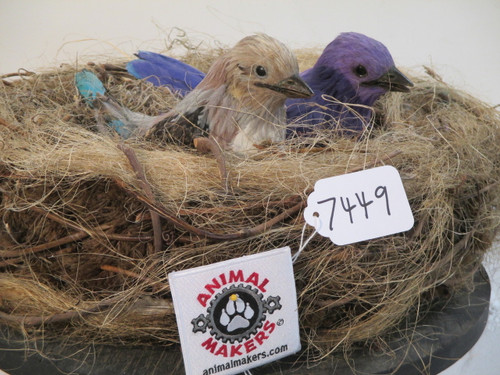 Animated Baby Birds in Nest Prop