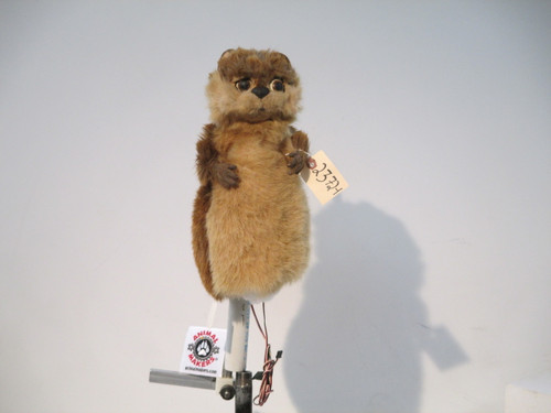 Gopher Character Animatronic Puppet