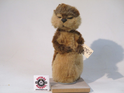 Gopher Character Animatronic 2 Puppet