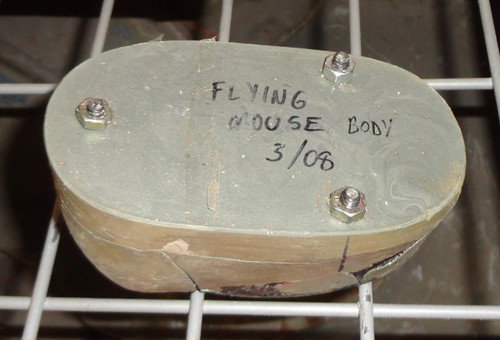 Flying Mouse Mold