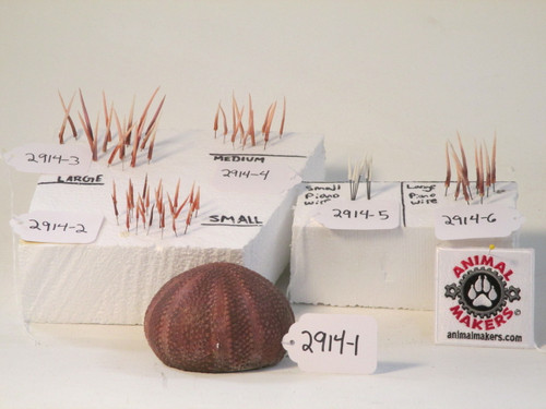 Animated sea urchin and parts