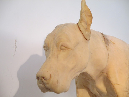 Face of the Great Dane Replica Form