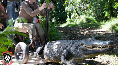 animated attacking alligator prop for movies and films