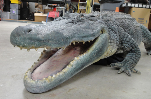 Realistic alligator movie prop