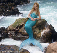 Mermaid-Merman Costume