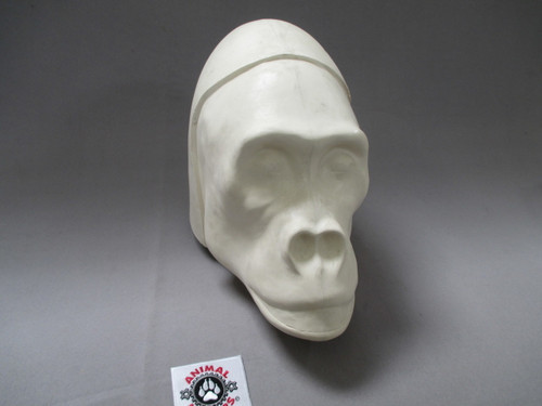 Hollow fiberglass head core female