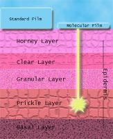 Retinol Molecular Film