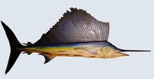 Fishtales Small Wooden Sailfish