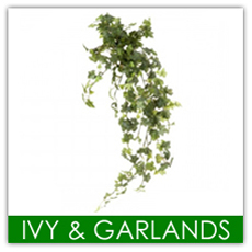 Ivy & Garlands