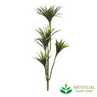 Yucca Tree 1.4m without pot