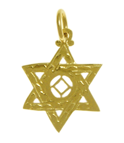 Style #569-10, 14k Gold Pendant, NA Symbol in a Jewish Star of David, Medium Size