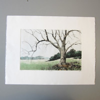 Pencil-Signed Numbered Dale Rayburn Aquatint Etching MERIGOLD #53/200 Unframed