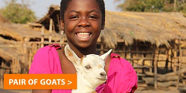 care-spot-goats.jpg