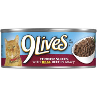 9 LIVES CAN BEEF IN GRAVY