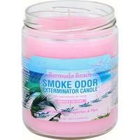 SMOKE ODOR EXTERMINATOR JAR BERMUDA BEACH