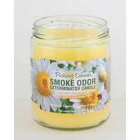 SMOKE ODOR EXTERMINATOR JAR PICKING DAISIES