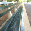 Concrete and Wood Park Bench