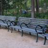 Hermann Park Bench