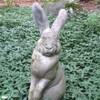 Lucifer Rabbit