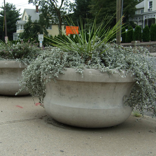 Barrier Planter