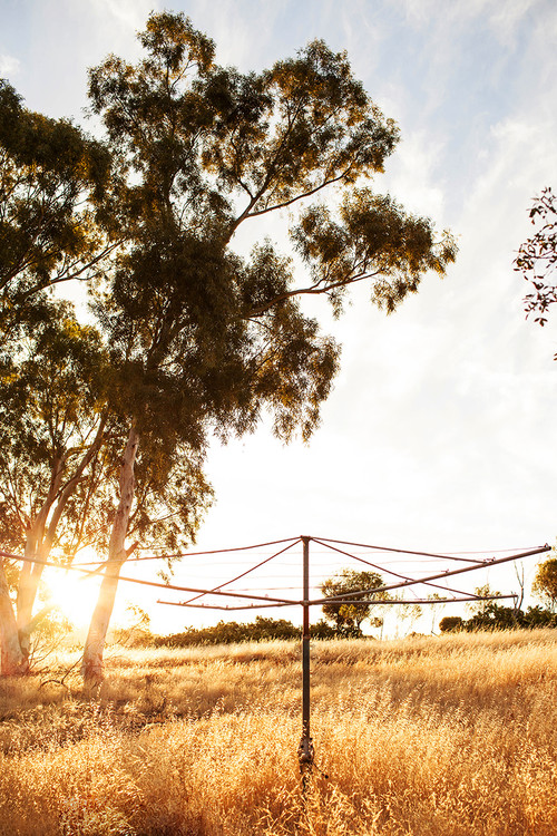 Outback Morning Photographic Print