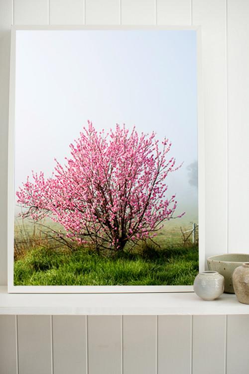 x1https://cdn3.bigcommerce.com/s-b76sgj/products/381/images/2075/blossom-shop__54747.1494209285.500.750.jpgx2