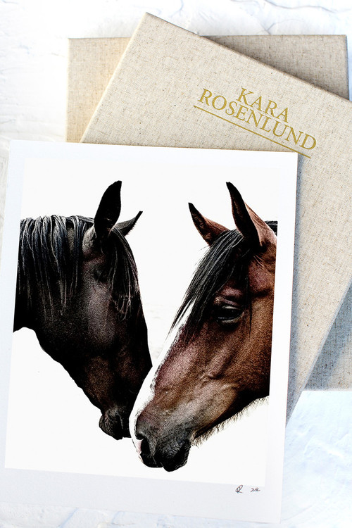 x1https://cdn3.bigcommerce.com/s-b76sgj/products/0/images/2738/horses__58289.1502850255.500.750.jpgx2