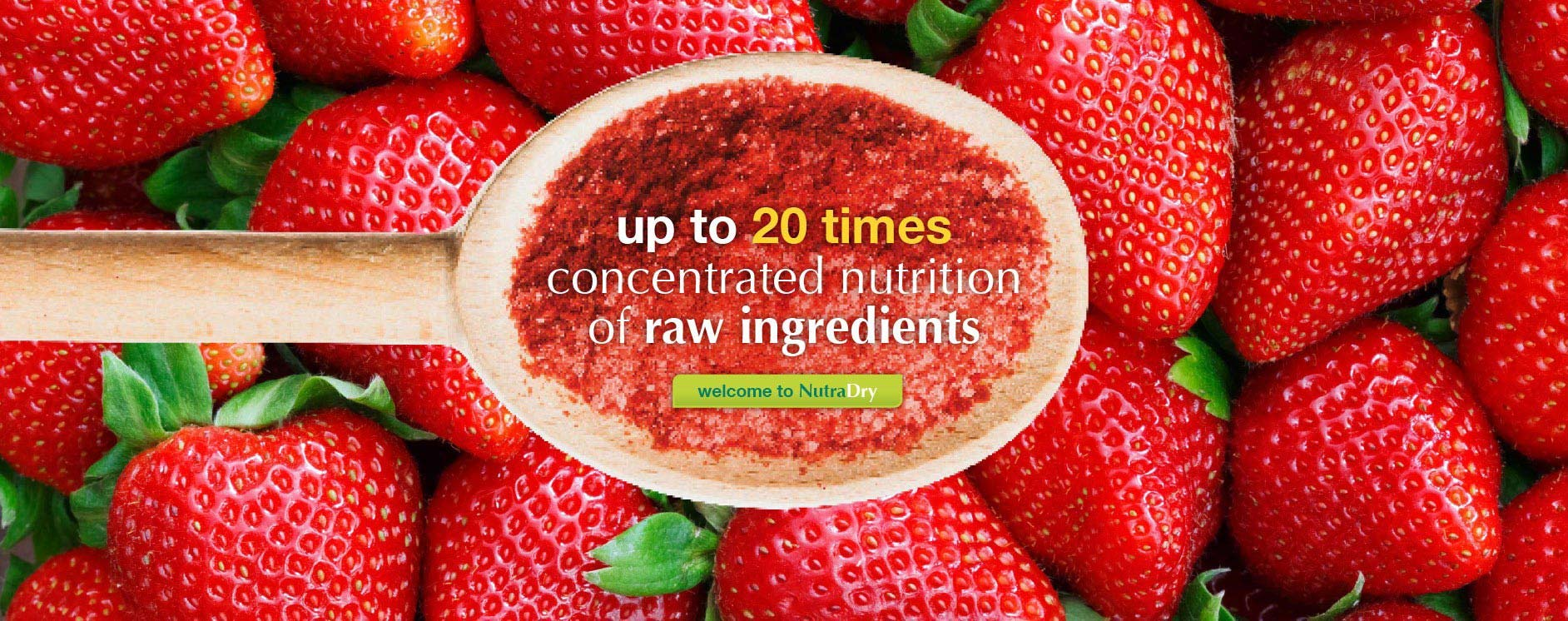 Welcome to Nutradry, concentrated fruit and vegetable powders