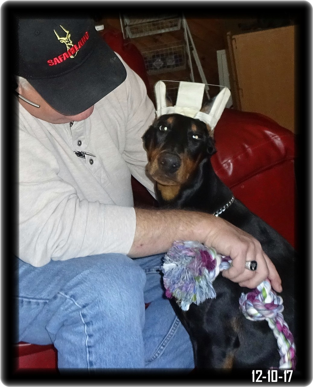 """This is my dad and when I get home there is a handsome Hoytt named Fritz waiting. I have been told Fritz is a """"yes dear guy"""" so I suspect I'll soon be the queen."""