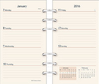 "6 3⁄ 4"" × 3 3⁄ 4"" Weekly/Monthly Planner (6-Hole Ivory)"