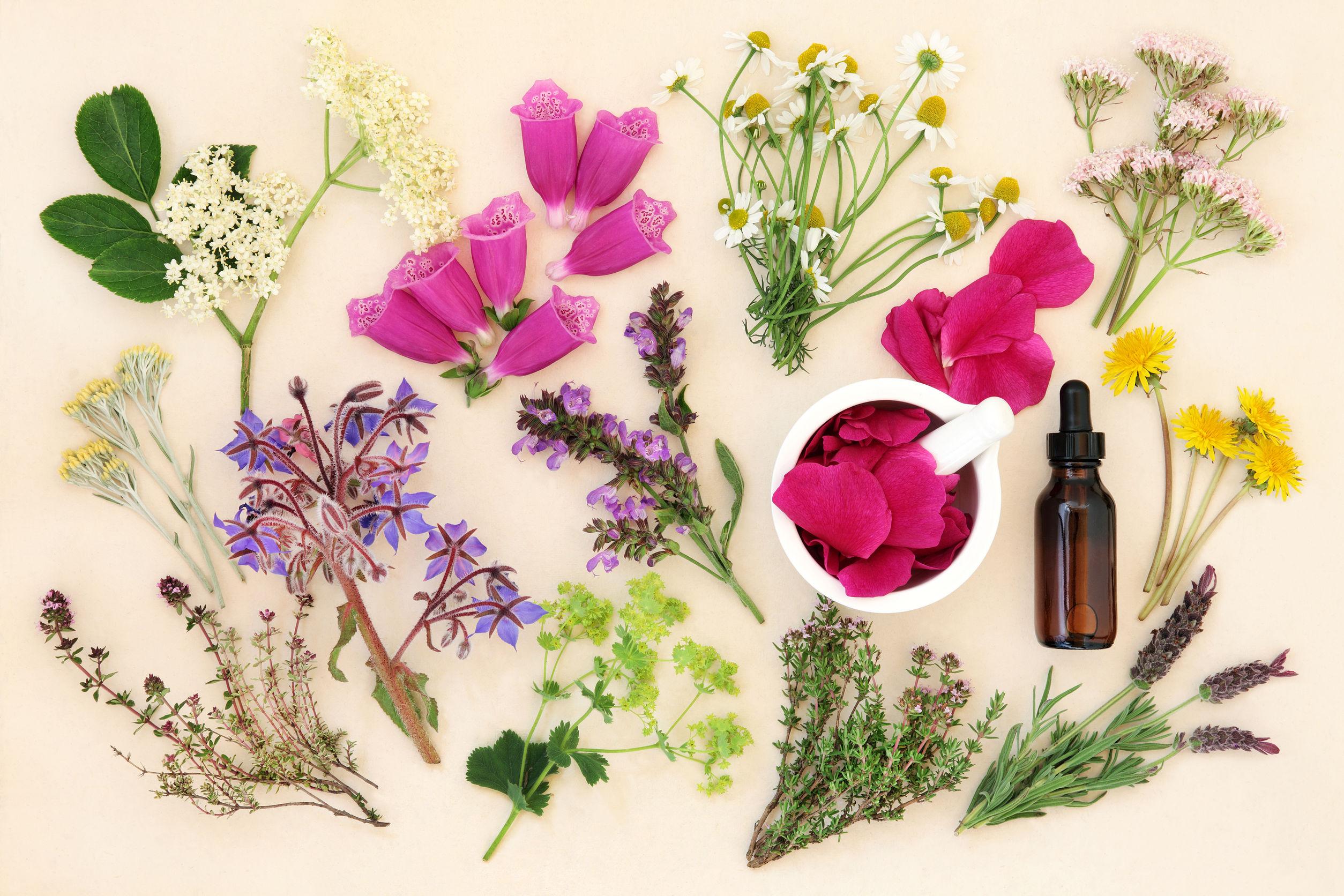 Healing through Power of Nature