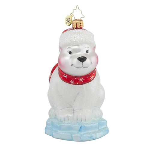 Polar Paul