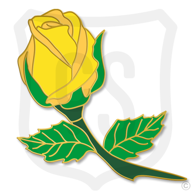Yellow Rose Bud (Flower)