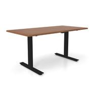 "Height Adjustable 30""x 60"" Ergonomic Business Desk - Warm Honey"