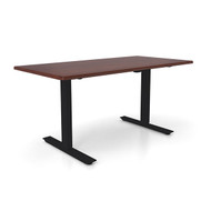 "Height Adjustable 30""x 48"" Ergonomic Business Desk - Cider"