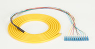Black Box OS1 Single-Mode Fiber Optic Pigtail, 12-Strand, LC, Yellow, 3-m (9.8-f FOPT50S1-LC-12YL-3