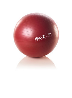 PRO STABLILITY BALL 55CM