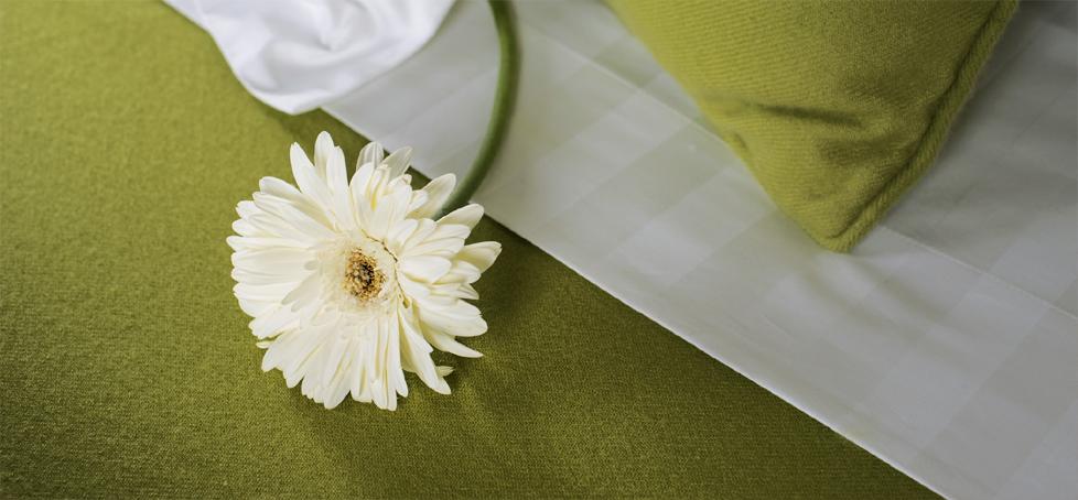 green-blanket-sm.jpg